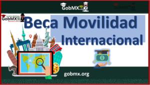 Beca de Movilidad Internacional