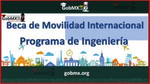 Beca de Movilidad Internacional Programa de Ingeniería