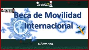 Beca movilidad Internacional