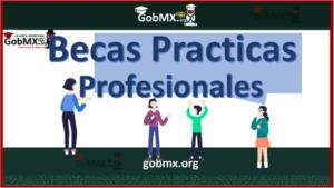 Becas para Prácticas Profesionales