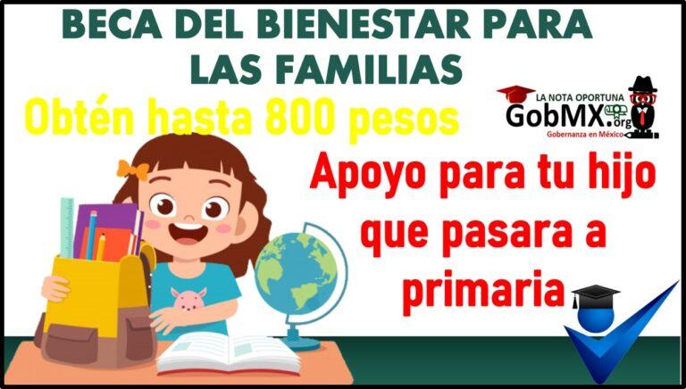 Beca del Bienestar para las Familias: Apoyo para tu hijo que pasara a primaria