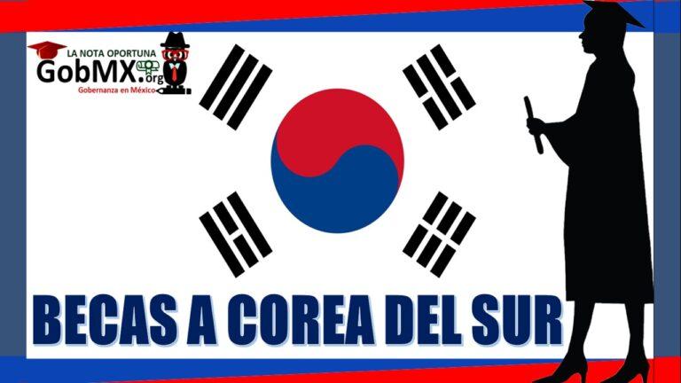Becas a Corea del Sur