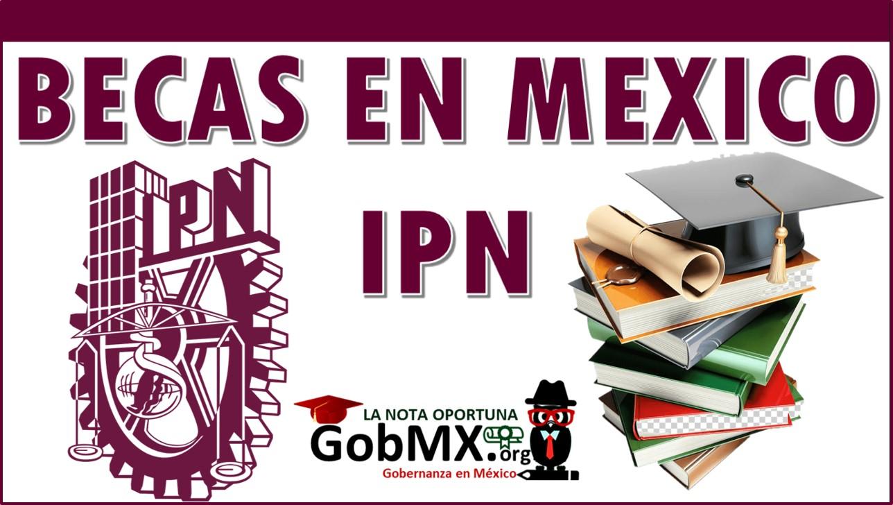Becas en México IPN