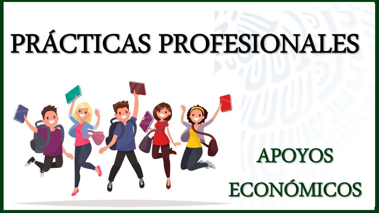 becas para practicas profesionales mexico