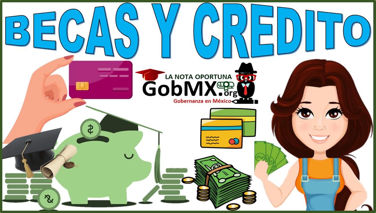 Becas y créditos
