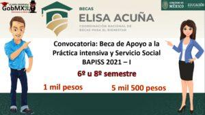 Convocatoria: Beca de Apoyo a la Práctica intensiva y Servicio Social BAPISS 2021 – I