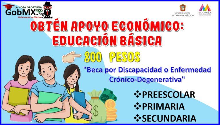 Obtén apoyo económico de 800 pesos: educación básica