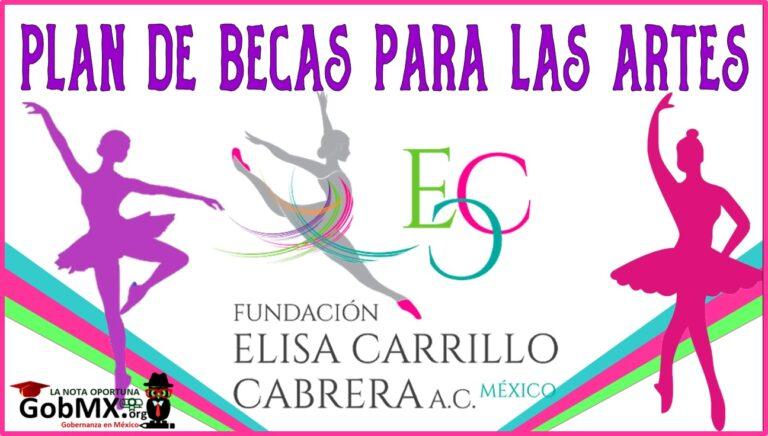 Plan de Becas Elisa Carrillo Cabrera, Para las Artes 2021-2022