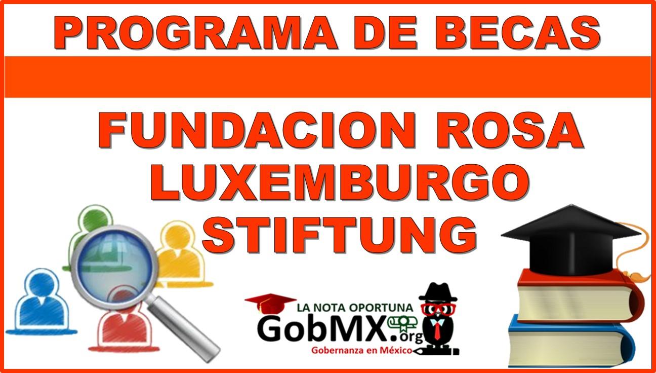 Programa de Becas Rosa Luxemburgo Stiftung de Alemania 2021-2022