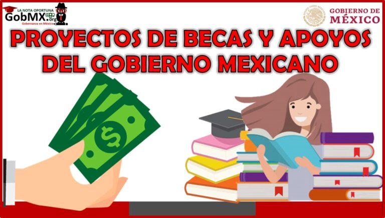 Proyectos de Becas y Apoyos del Gobierno Mexicano