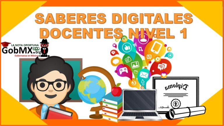 Saberes digitales docentes nivel 1