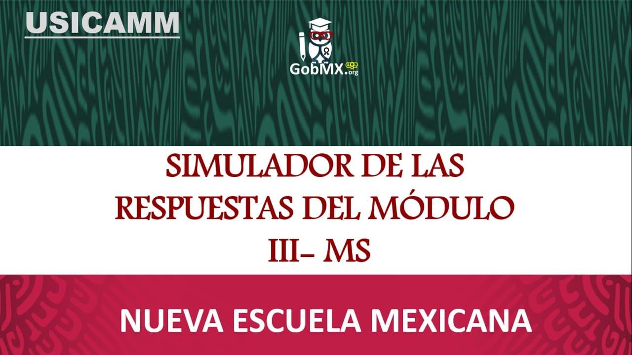 simulador-de-las-respuestas-del-modulo-iii-ms